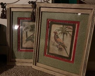 Lovely numbered parrot prints.  Beautifully framed.