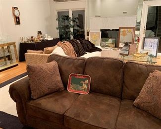 Great micro suede loveseat. Also a cool retro looking gold loveseat with a pullout bed.