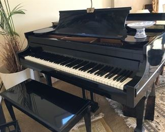 Kranich & Bach baby grand piano -ebony finish -completely refurbished -humidifier system .