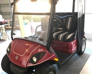 Immaculate 2008 Yamaha 2-Seater Gas Golf Cart - $4250