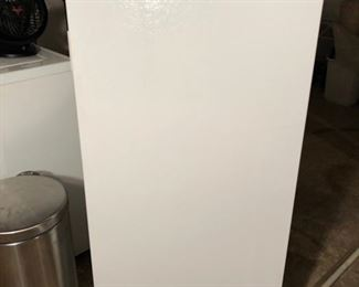 Frigidaire commercial upright freezer.