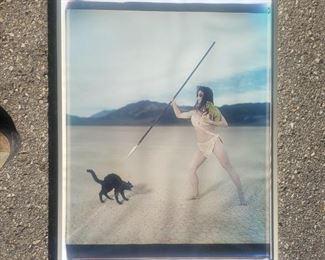 "Tim Burton 24"" x 20"" Polaroid Photograph. ""Cat Attack"". Very Tate photo."