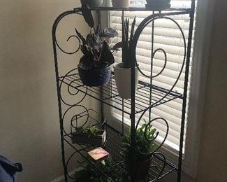 Bakers rack w/plants
