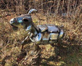 Jack Kearney Goat