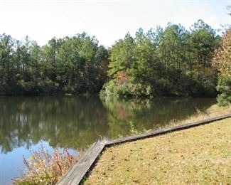 Lake with wall - back of home