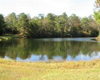Lake on west side - fully stocked!