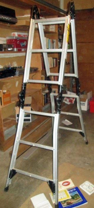 Garage:  Collapsible Ladder