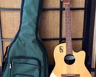 Acoustic Guitar and Soft Case.