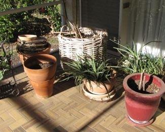 SOOO much gardening pottery !!