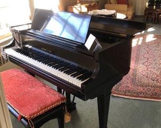 Professional Grand black lacquer piano