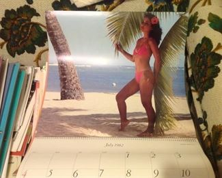Japan Airline Large 16.5 Calendars  A World of Beauty