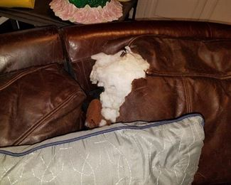 Dog's victim, but with a throw over it, out of sight...out of mind!
