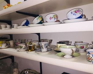 large teacup collection