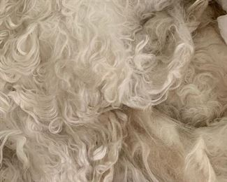 Sheared Alpaca Fiber, many beautiful colors. From 20 different Alpacas.  All bags are tagged with the color and name.
