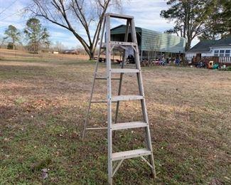 6ft Metal Ladder