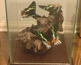 glass butterfly art