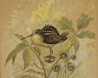 Rex Brasher Signed Watercolor Bird