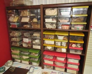 Large rock  & fossil collection