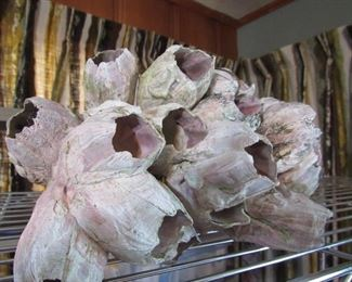Large barnacle formation