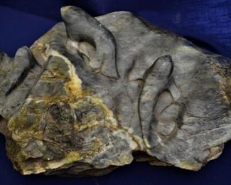 Alaskan Carved Soapstone of resting Seals