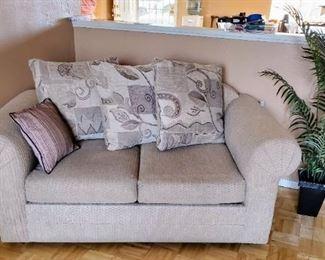 Loveseat (sleeper Sofa)