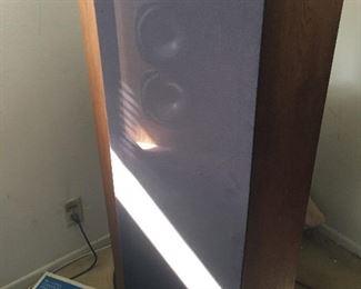 Infinity speaker pair