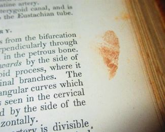 """Finger Print Found in """"A System of Human Anatomy"""" Illustrated Medical Book ca. 1848"""