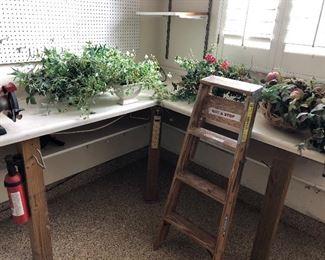 Silk plants , ladder
