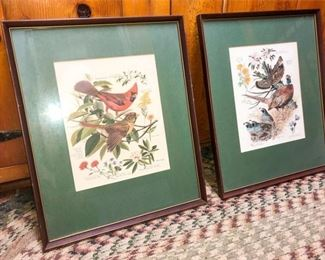 59. Two 2 Scientific Illustrations of Birds and Plants
