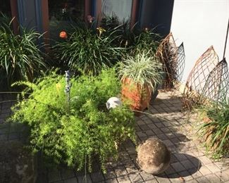 More plants and garden ornaments