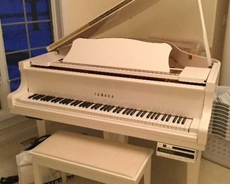 Piano. Yamaha player