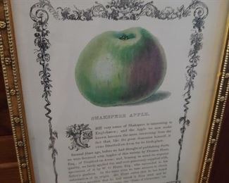 Archival framed 19th century lithograph.