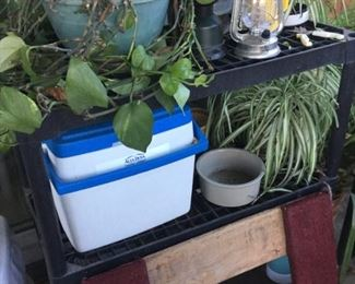 Plants, coolers, moving dolly