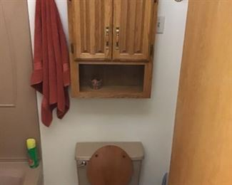 Toilet, wall cabinet