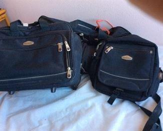 Ricardo of Beverly Hills luggage