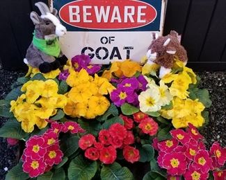 Beware of boats and flowers