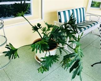 """REDUCED $200 FOR PAIR                                                            16"""" Ceramic potted planters on rollers $250 pair"""