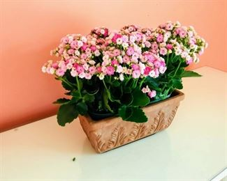 Ceramic faux plant $15