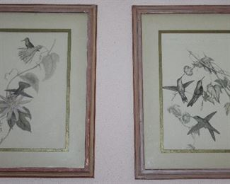"Framed and Matted Botanical Hummingbird Prints (18"" x 22"")"