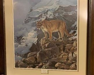 """Wildlife Print of Mountain Lion, $35. Dimensions: 26""""W x 28""""H. NOW 50% OFF - NEW PRICE $17.50! Use contact button below for purchase with local pick up"""