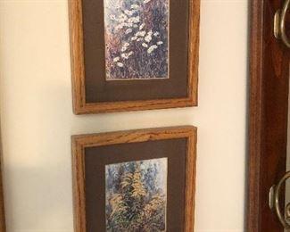 Framed prints $14 each
