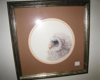 Owl picture  $45