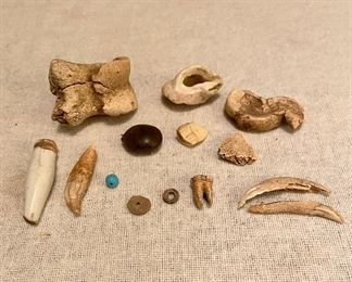 Various Finds - Porcelain leg, bear tooth, beads, tooth, bone fragments, petrified shells - $35