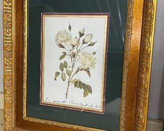 SIGNED BOTANICAL PRINT - VERY NICE DOUBLE FRAME - $40. Look at them before you pay- be happy with what you're buying