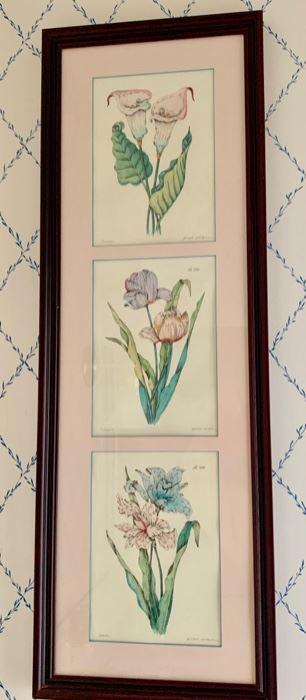74. 3 Framed Botanicals (12.5 x 36''),  $ 90.00
