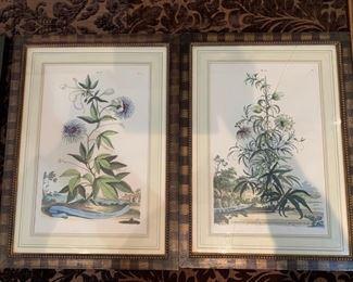 """209. Pair of Botanicals (14"""" x 19""""),  $ 180.00"""
