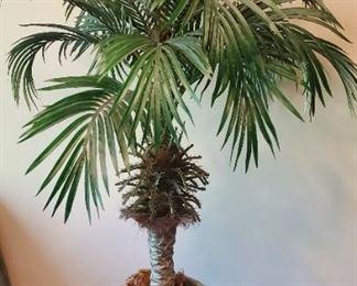 "$20 - 43"" palm tree (artificial)"