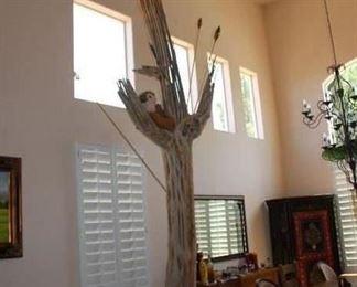 Saguaro Cactus skeleton - Very Rare and tall