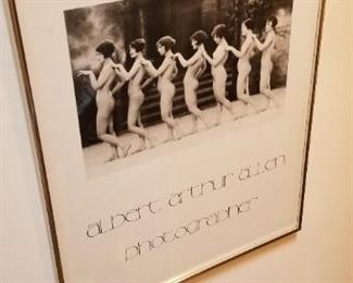 #305 arthur Allen framed print  18X 22   $25