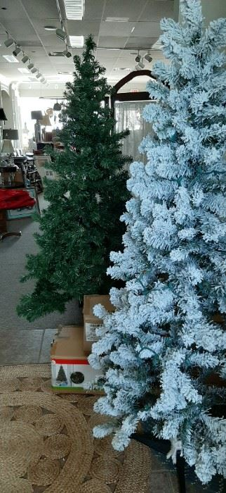 Christmas Trees - great for spare room or basement